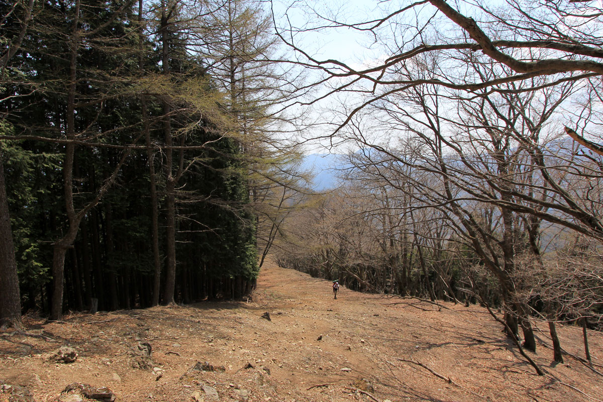 ストックが必要な登山道